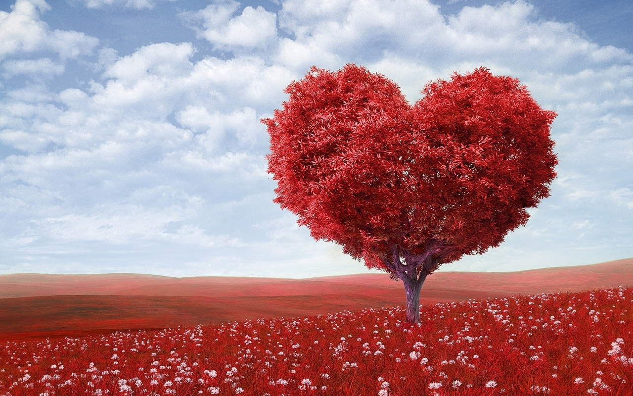 Give your customers a reason to love you - tree shaped as a love heart.jpeg